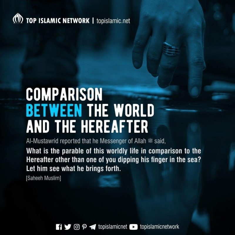 the world compared to the hereafter