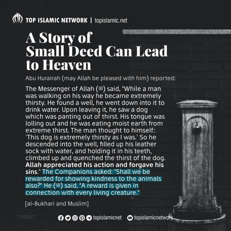 A Story of Small Deed Can Lead to Heaven