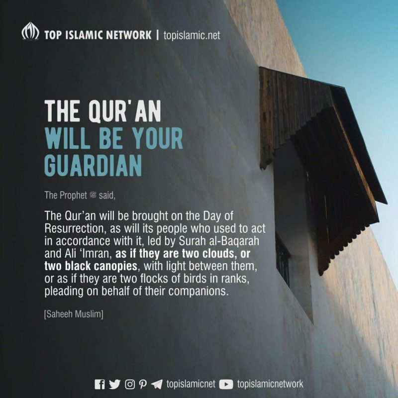 The Qur'an will be Your Guardian
